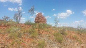 WA, Western Australia, Halls Creek