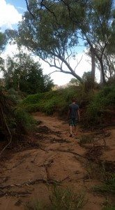Geiki National Park, Wyndham, Western Australia, Kimberley Region