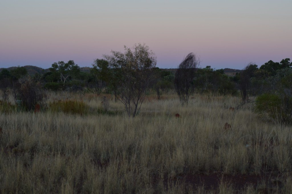 Outback, nikon, remote living, Halls Creek