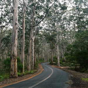 Margaret River, Road trip, CHAPTERTRAVEL, Things to do in Perth