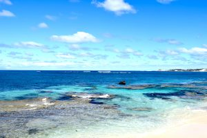 Rottnest Island, Perth, Coastline, CHAPTERTRAVEL, Quokka, Turquoise Waters, Perfect Water, Australia, Adventure