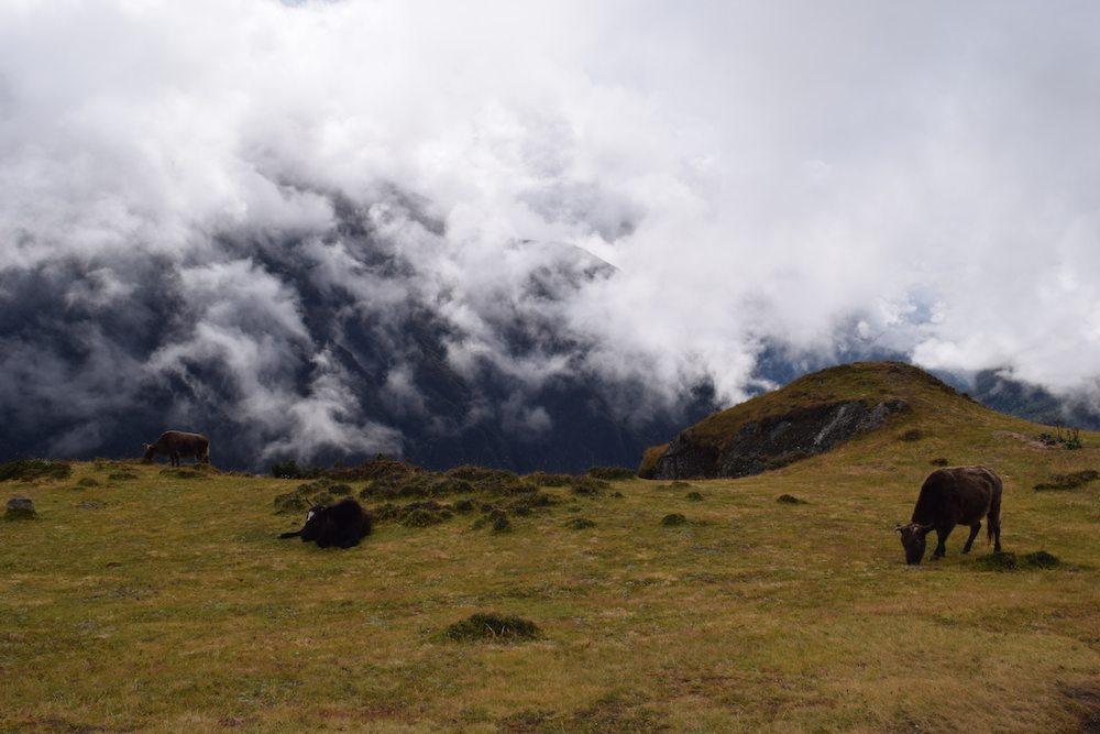 Acclimatization Day, Acclimatization day in Namche Bazaar, Namche Bazaar, EBC Trek, Everest Base Camp Trek, Mount Everest Base Camp Trek, CHAPTERTRAVEL, Himalayas, Everest Region