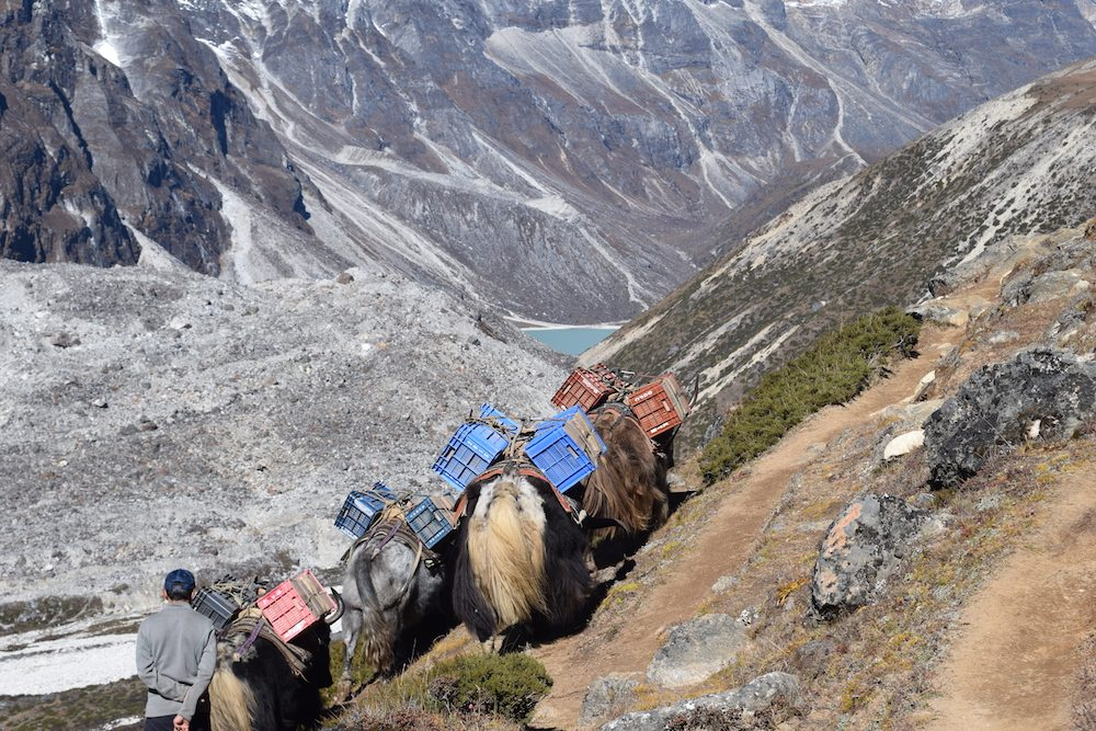 From Lobuche to Dingboche, Lobuche, Everest Region, EBC Trek, Himalayas, Mountains, Altitude sickness, CHAPTERTRAVEL