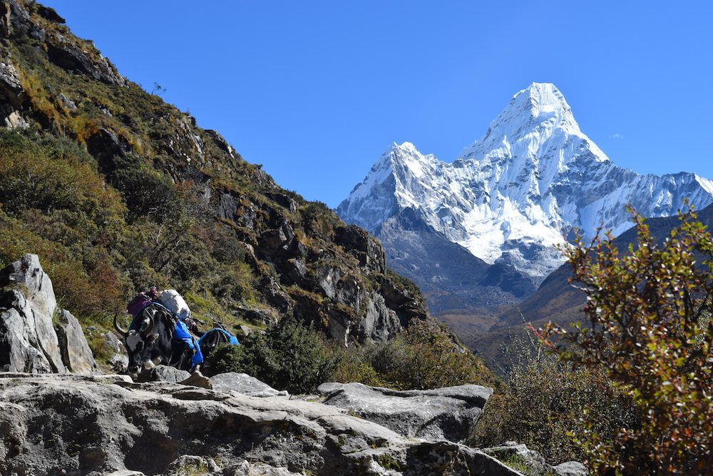 Tengboche to Pangboche, Pangboche, Himalayas, Everest Region, EBC Trek, Everest Base Camp Trek, Trekking, Altitude Sickness