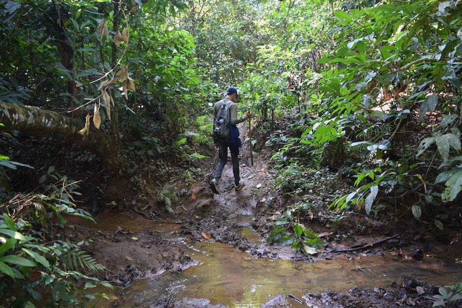 Chitwan National Park, Nepal, CHAPTERTRAVEL, chapter travel, adventure