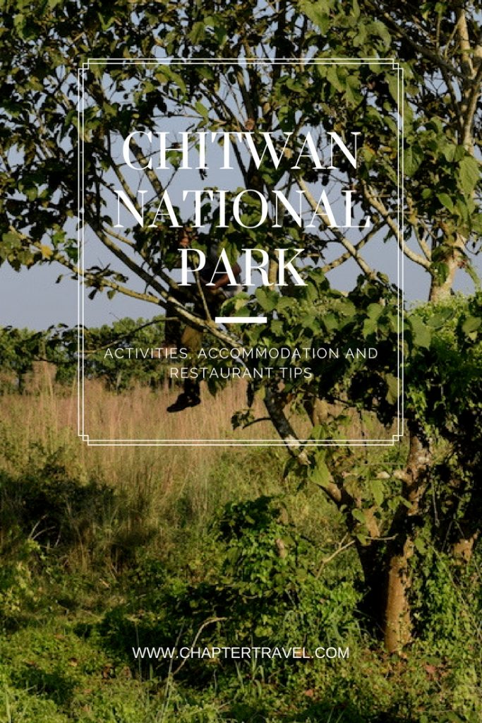 Chitwan National Park, Jungle Trek Nepal, Nepal, National Parks Nepal, Where to eat in Chitwan, Where to sleep in Chitwan, Sauraha
