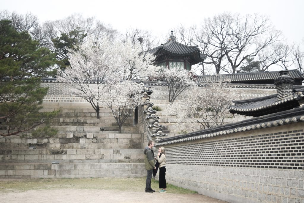 Changdeokgung Palace is a beautiful, photogenic place in Seoul. On this photo the cherry blossoms were in full bloom, so beautiful.