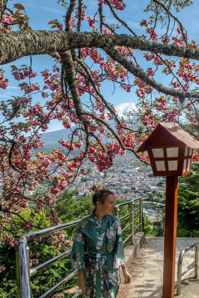 This photo is taken at the Chureito Pagoda, while we were walking back. The beautiful flower were still in bloom. Check out our Mount Fuji day trip itinerary below