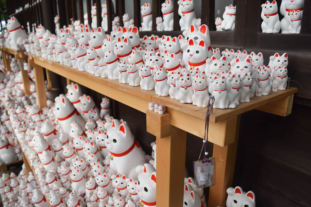 If you're looking for an off the beaten track location in Tokyo, go to the Gotokuji temple! It's a unique place in Japan and has hundreds of beckoning cat statues. How cool!