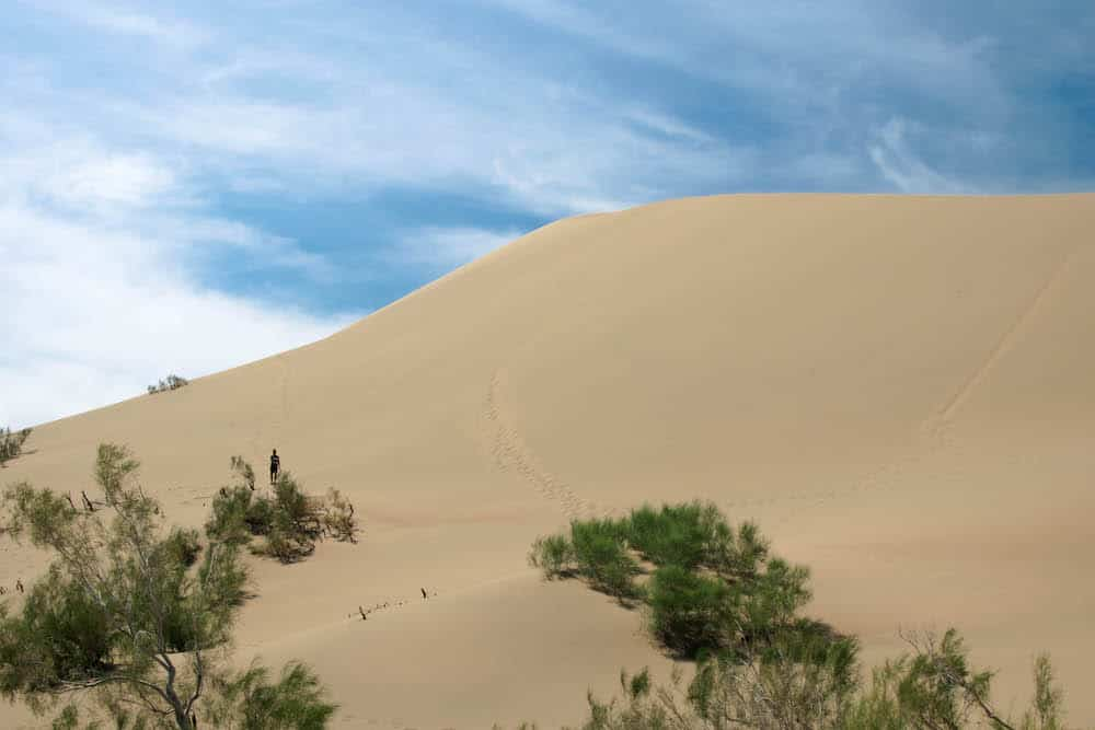 The famous Singing Dunes is part of Altyn-Emel National Park and is 150 meters high. You can climb on top of the dunes and you'll hear a sound that resembles the engine of an airplane.