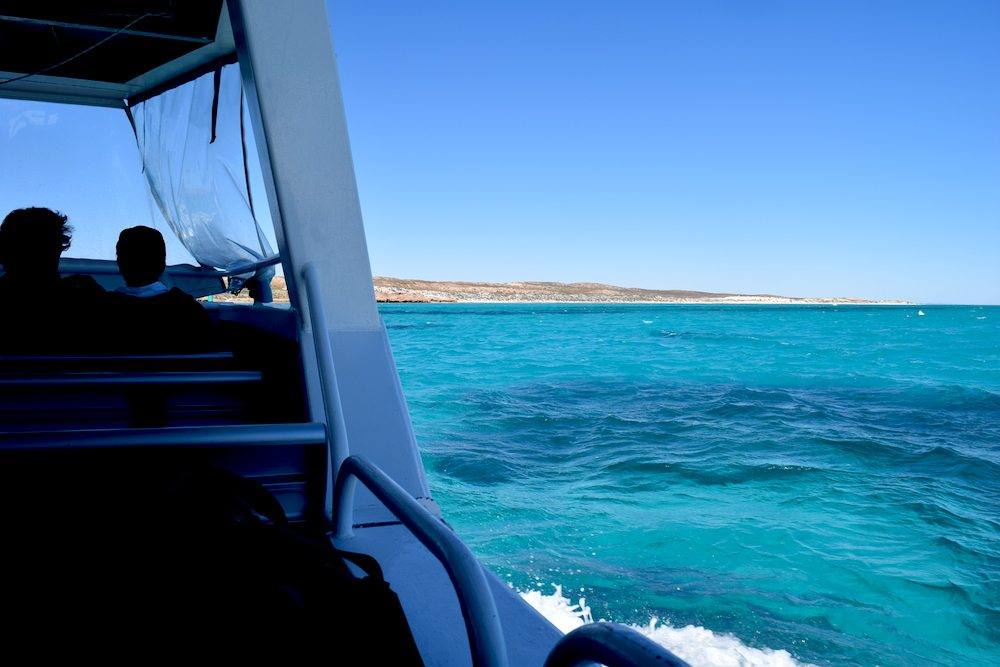 In this post we share our experience with Coral Bay Ecotours! We had an absolute blast at the Ningaloo Reef and we definitely recommend this tour for anyone that is in Coral Bay and wants to explore the marine wildlife of the Ningaloo Reef.