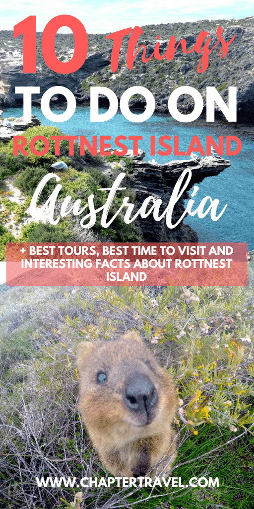 If you're looking for useful information about your day trip to Rottnest Island, check out this article. We discuss the best tours to Rottnest Island, the best time to visit Rottnest Island, some facts about Rottnest Island and quokkas. And best of all, we discuss 10 fun things to do on Rottnest Island!