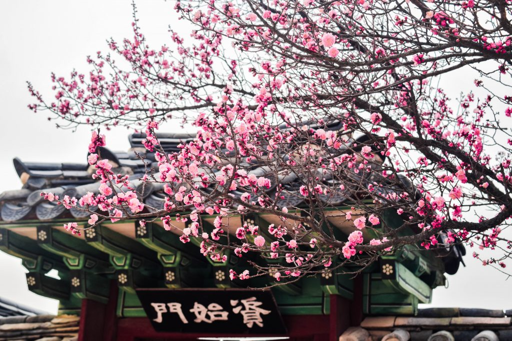 Changdeokgung Palace, Things to do in Seoul, Complete Travel Guide Seoul
