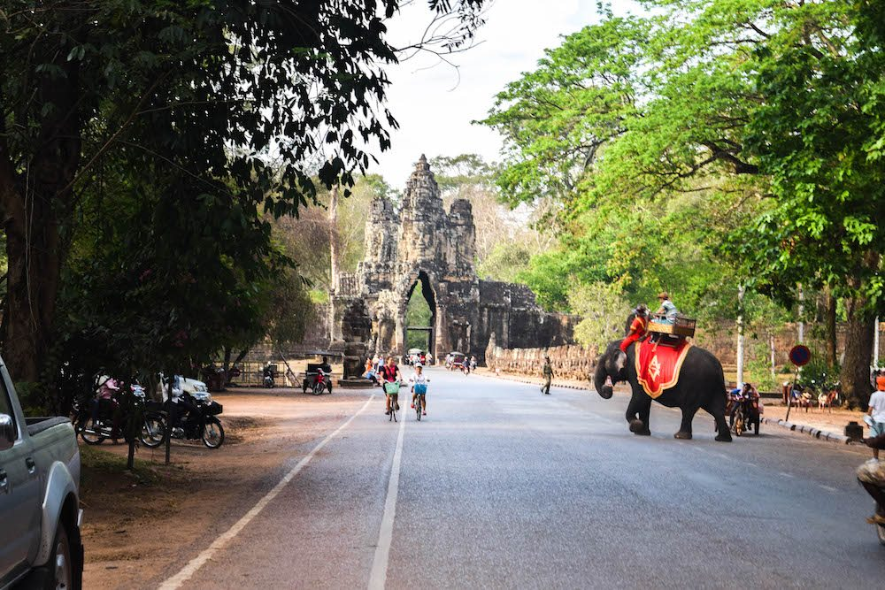 The tourism industry often exploits animals. Think about abusing the elephants, or breaking them, just so tourist can ride them as a tourist attraction. We saw this elephant crossing the road in Angkor Wat, Cambodia. It was just so sad. An elephant should be a wild animal and should not be ridden. It's unethical.