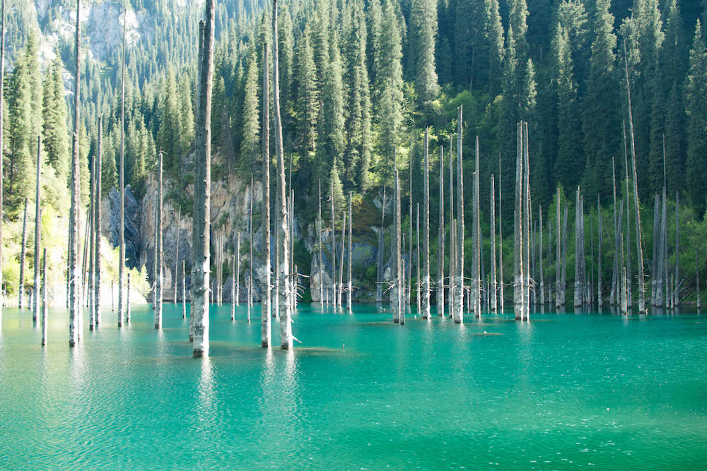 Kaindy Lake in Kazakhstan is a breathtaking place. It was created due to a earthquake. The result are tall trees that emerge from the turquoise waters. The trees in the water were naturally well preserved in the water because they were frozen.